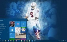 Buffalo Bills win10 theme