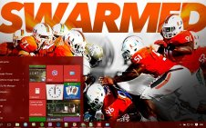 Miami Hurricanes win10 theme