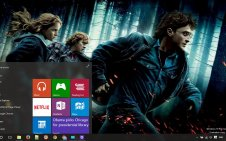 Harry Potter win10 theme