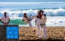 Karate win10 theme