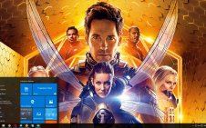 Ant-Man and the Wasp win10 theme
