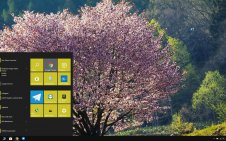 Sakura win10 theme
