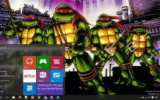 Teenage Mutant Ninja Turtles win10 theme