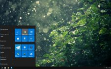 Rain in Forest win10 theme