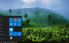 Tea Plantation  win10 theme