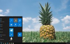 Pineapple win10 theme
