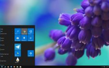 Hyacinth win10 theme