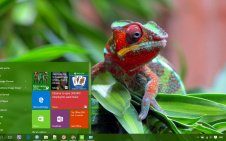 Chameleon win10 theme
