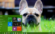Bulldog win10 theme