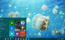 Sea Life win10 theme