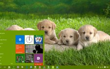 Cute win10 theme