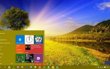Summer win10 theme