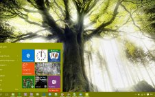Tree win10 theme