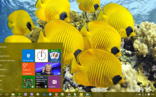 Fish win10 theme