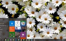 Daisy win10 theme