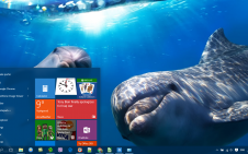 Dolphin win10 theme