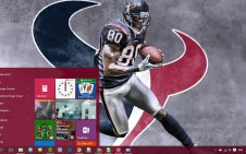 Texans win10 theme