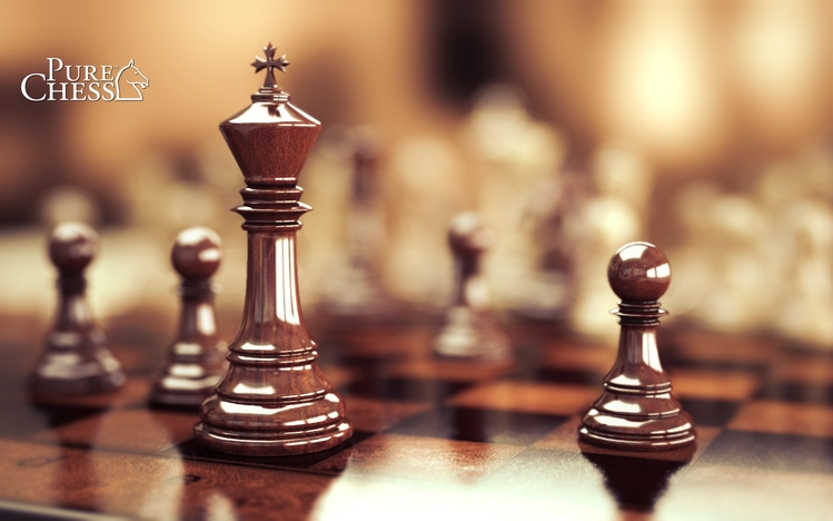 how to play chess in windows 8.1