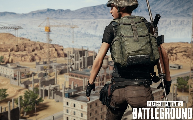 Unduh 770 Koleksi Pubg Wallpaper Windows Paling Keren